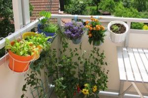 балкон подправки