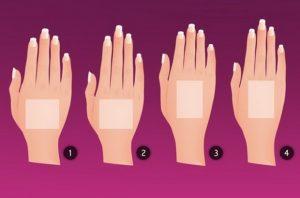 формата на ръката