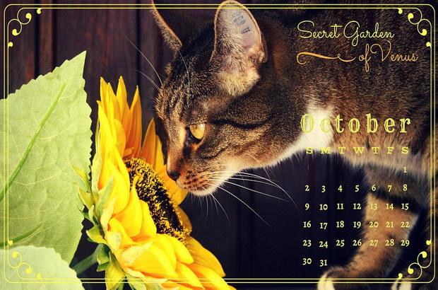 календар рождена дата