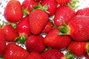 замразяване на ягоди